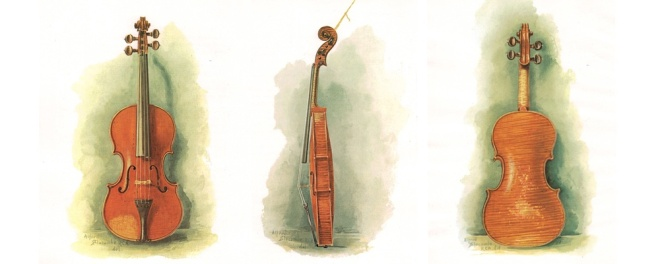 Alfred Slocombe's 1889 chromolithographs of the Tuscan Stradivari printed for Hill's monograph on the violin.